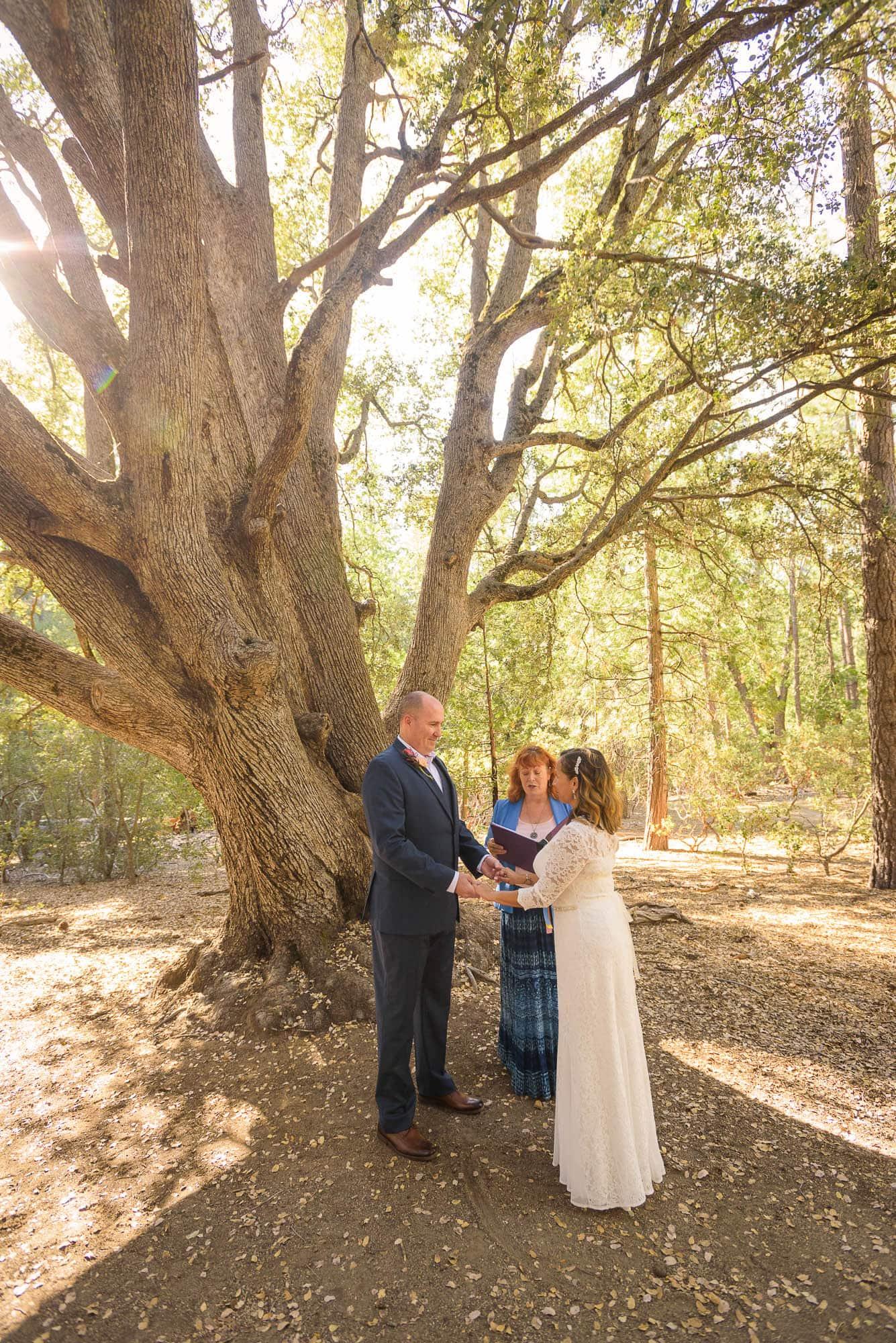 013_Alan_and_Heidi_Wedding_Jackie_Dannon