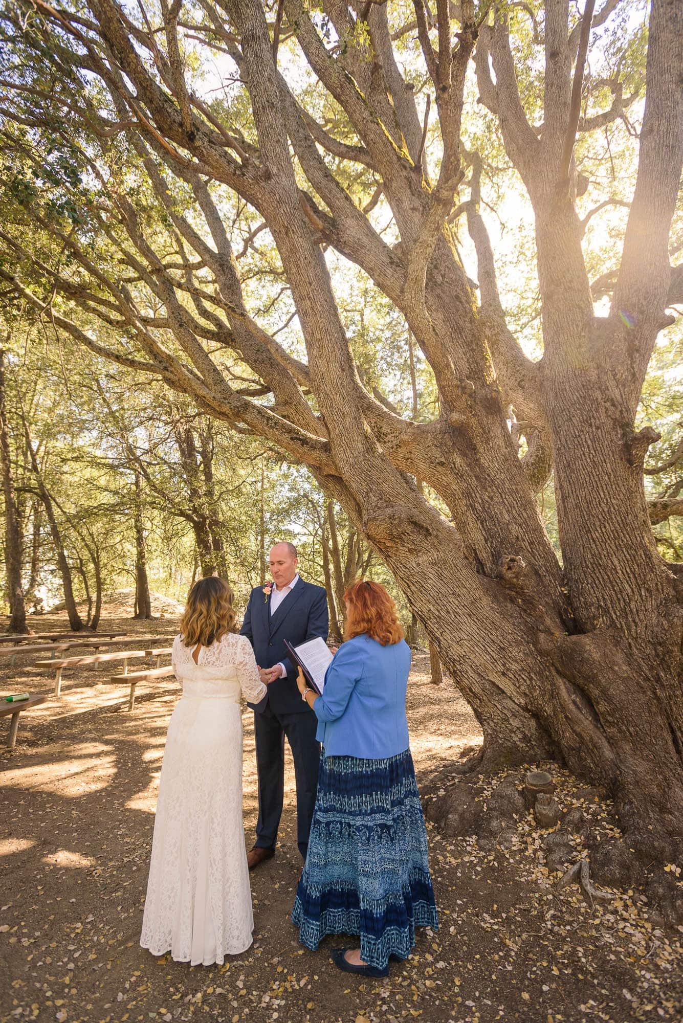 018_Alan_and_Heidi_Wedding_Jackie_Dannon