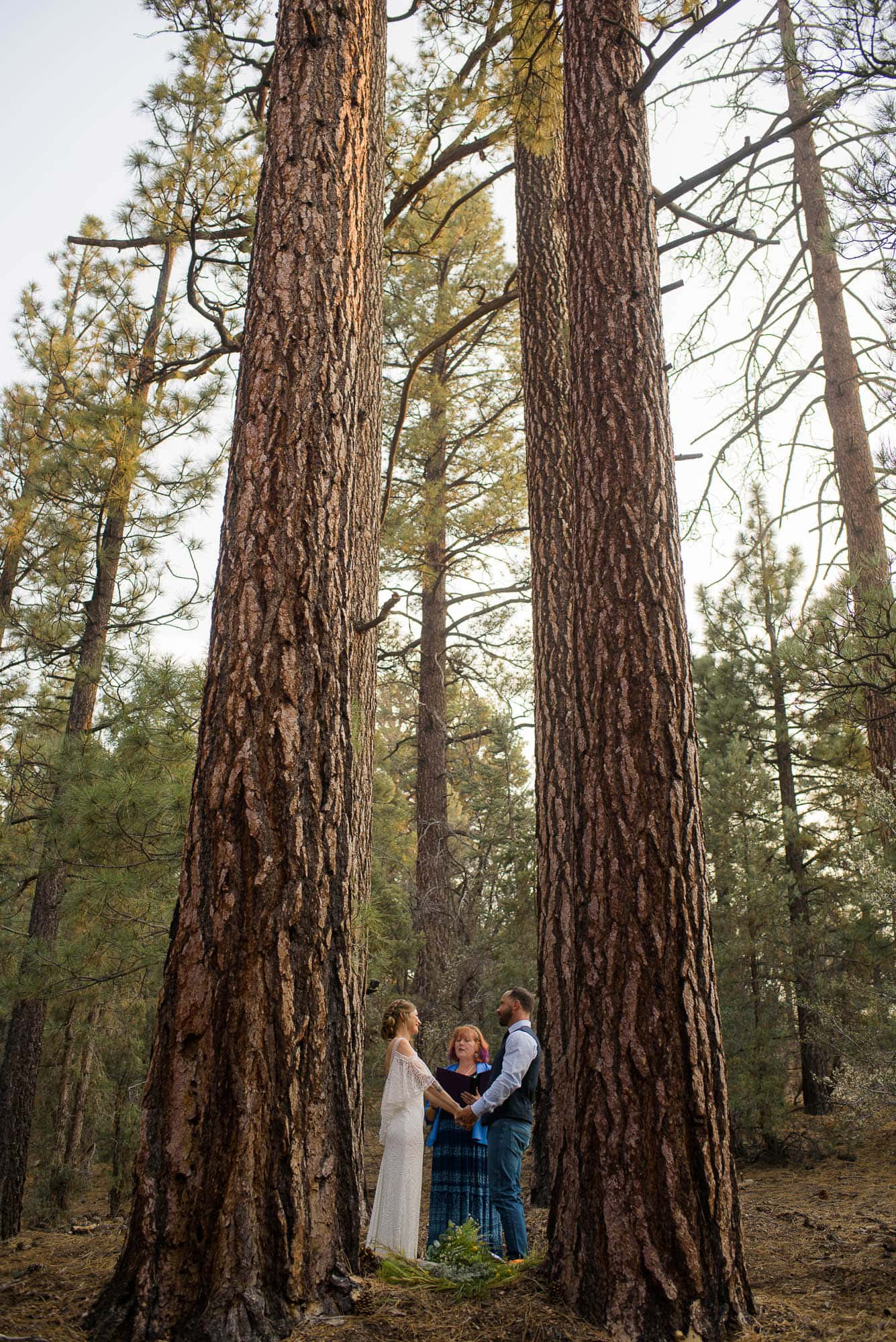 021_Alan_and_Heidi_Big_Bear_Elopement_Holly_Sean