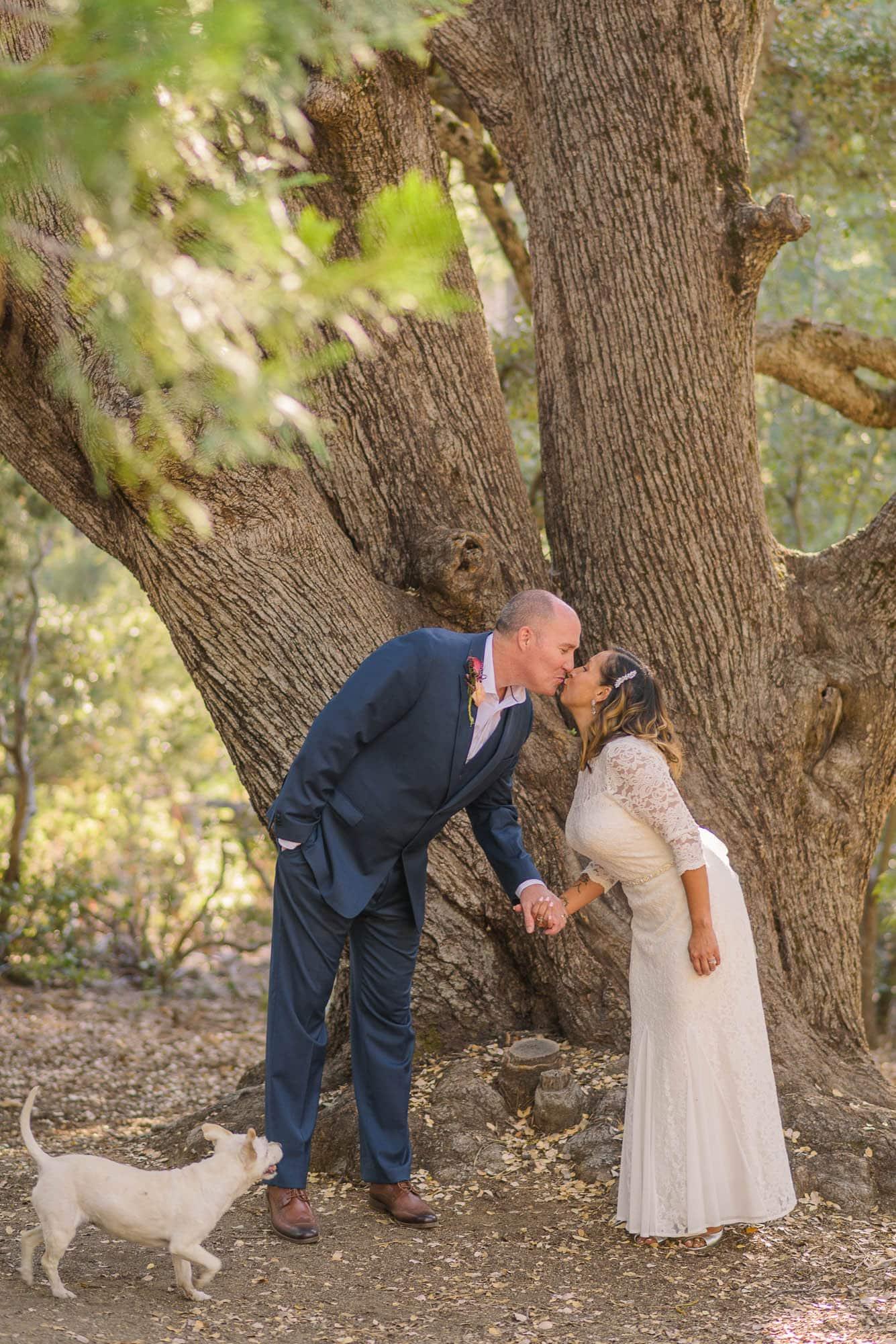 033_Alan_and_Heidi_Wedding_Jackie_Dannon