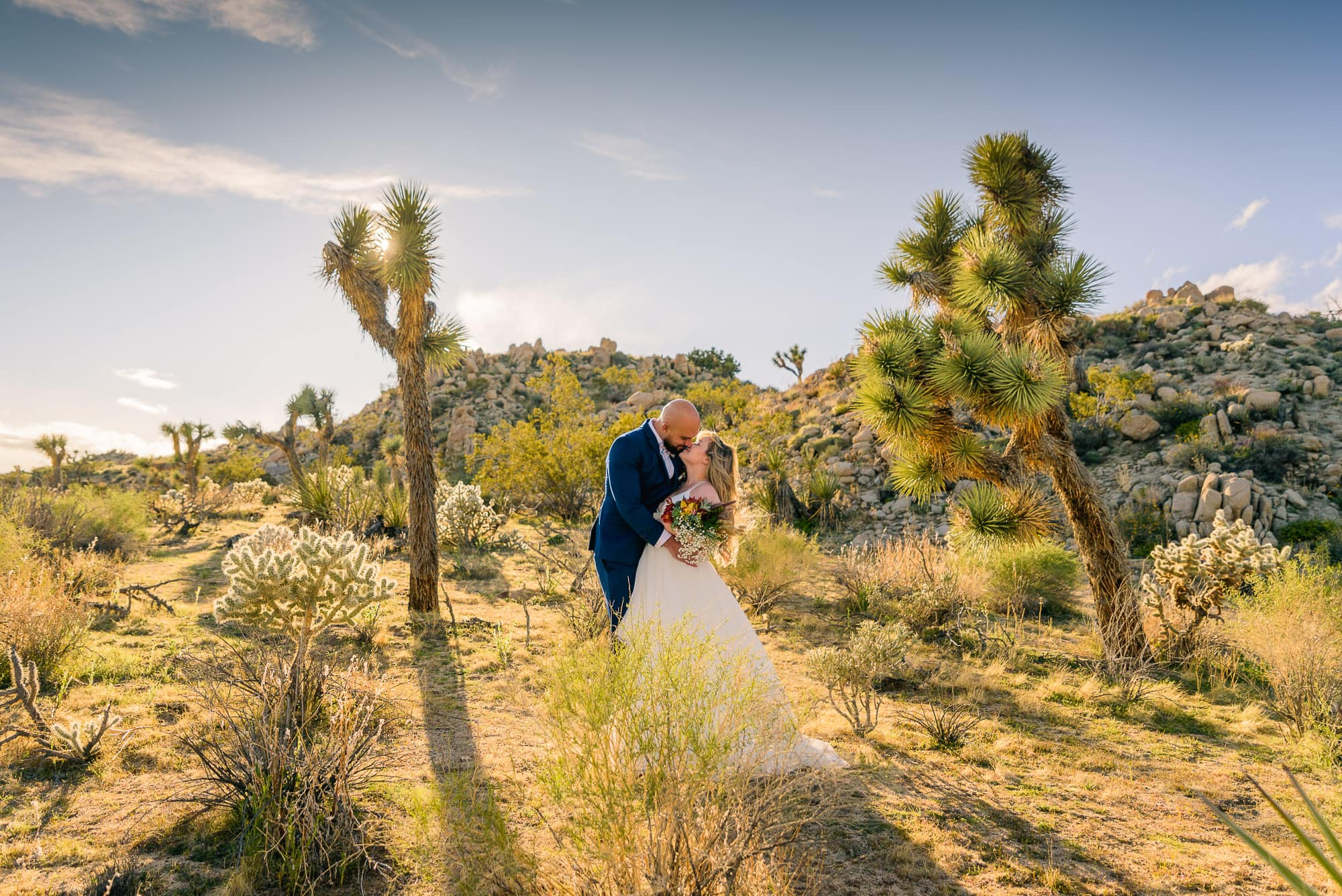 041_Alan_and_Heidi_Joshua_Tree_Spring_Elopement